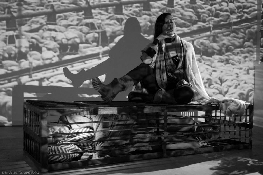 ατρείδες: τετράδια κρίσης μια ιστορία για την κρίση στην ελλάδα